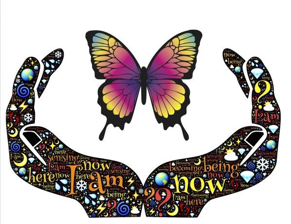Butterfly_1920