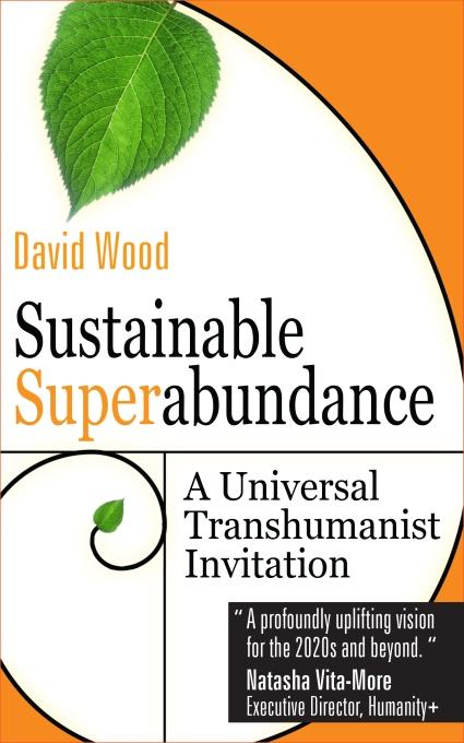 David wood Book Cover 6